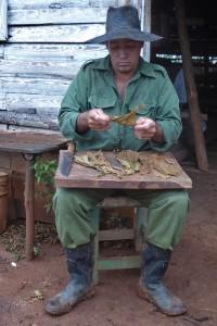 P1080269 Cuba - Viñales (Fabrication d'un Cigare)