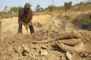 Tourisme au Bénin - Lettres d'information (Manioc)