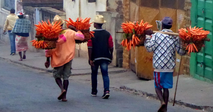 Voyage solidaire à Madagascar - Fianarantsoa