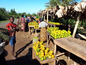voyage utile à Madagascar - les vendeurs de mandarines
