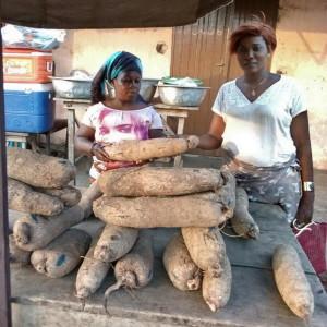 Tourisme équitable Bénin - microcrédit