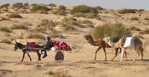 Au cœur de la Tunisie avec A' Tibo Timon