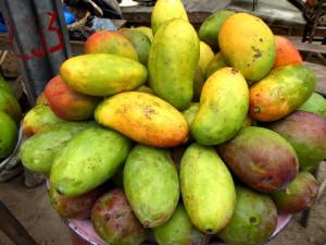 Voyage responsable Bénin - Mangues