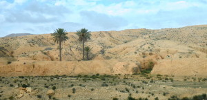 Maison troglodytique Matmata Tunise