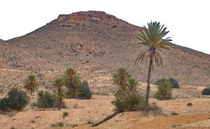 Matmata - La Tunisie des tunisiens