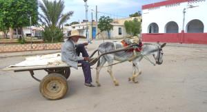 Voyage solidaire Tunisie - Sbeitla