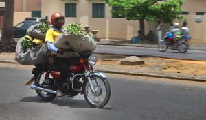 Tourisme équitable Bénin - Zemidjam