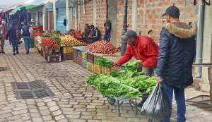 Accueil - Tourisme équitable Tunisie