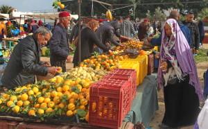 Voyage solidaire Tunisie - Zarzis