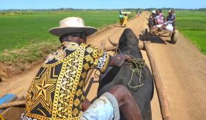 Enquête de satisfaction - Tourisme solidaire Madagascar