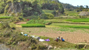 Bulletin d'inscription - Tourisme solidaire Madagascar